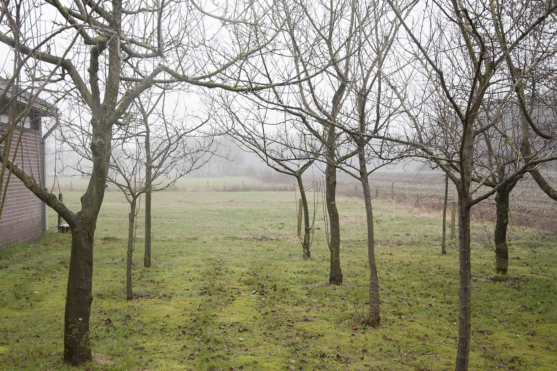 2011-02-26-hsb-blesdijke-2709