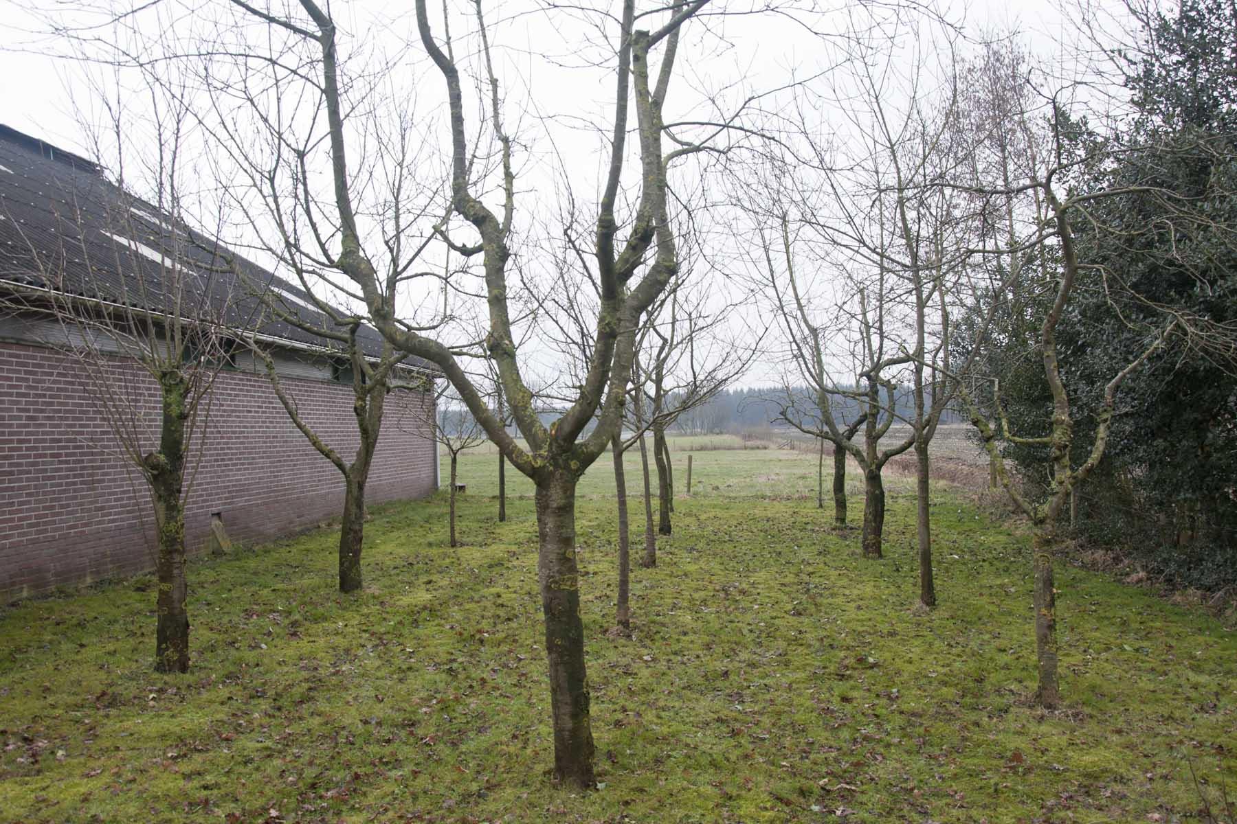 2011-02-26-hsb-blesdijke-2723