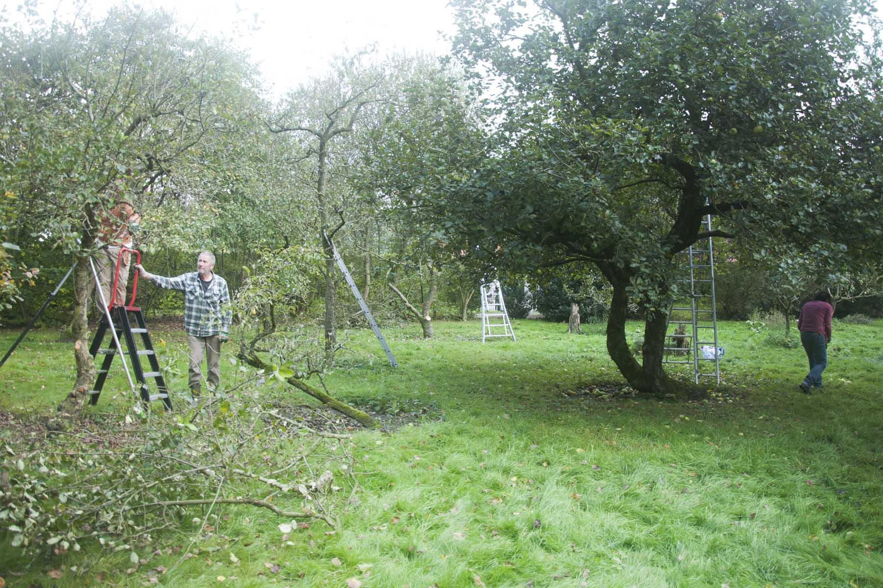2014 09 17 HSB Blesdijke 5706
