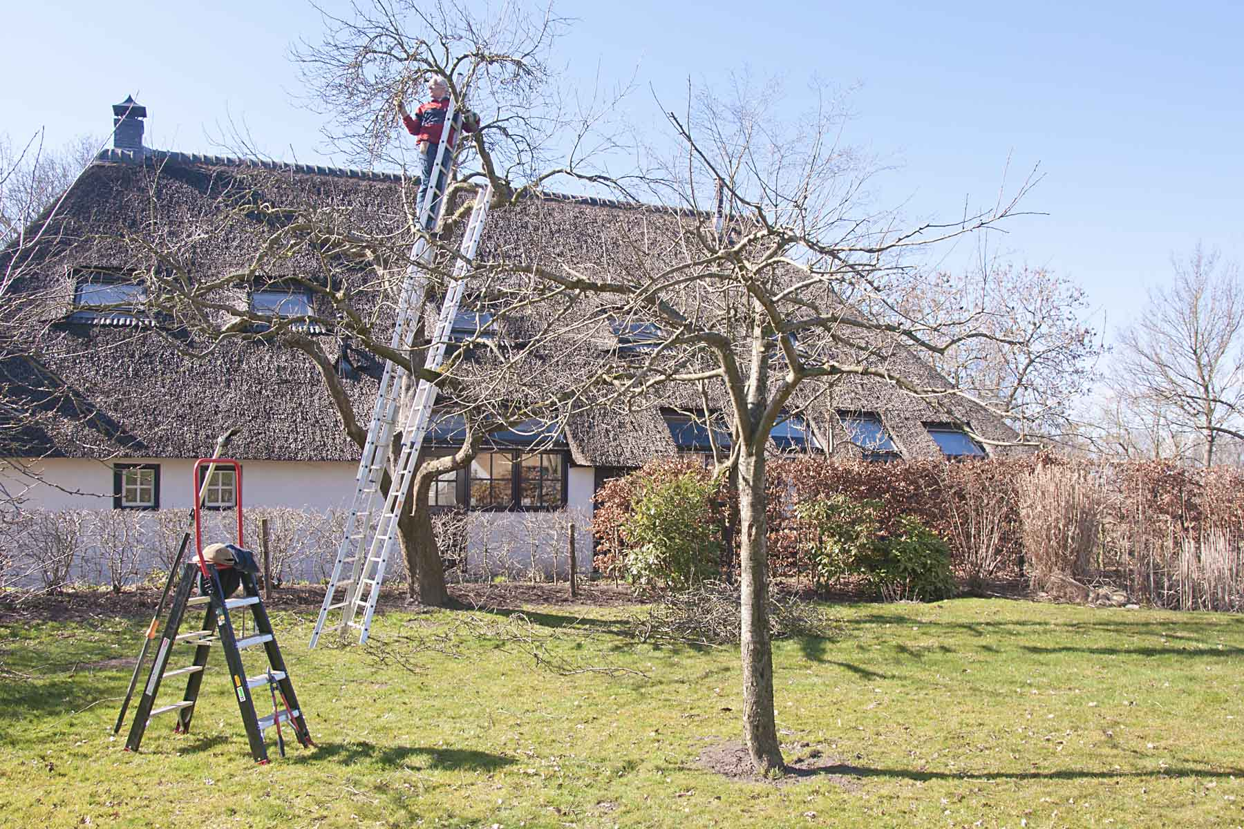 2011-03-19-hsb-de-basse-2775