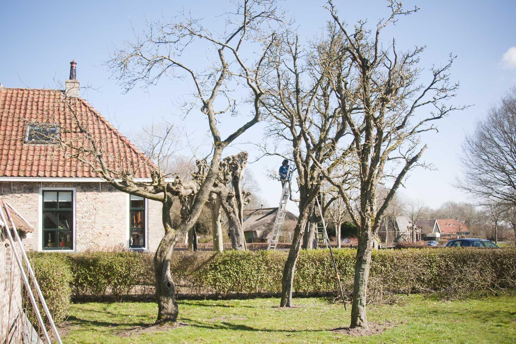 2011-03-19-hsb-de-basse-2777