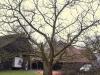 2013-02-16-hsb-giethoorn-4499