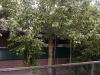 2012-08-11-hsb-st-jansklooster-4106