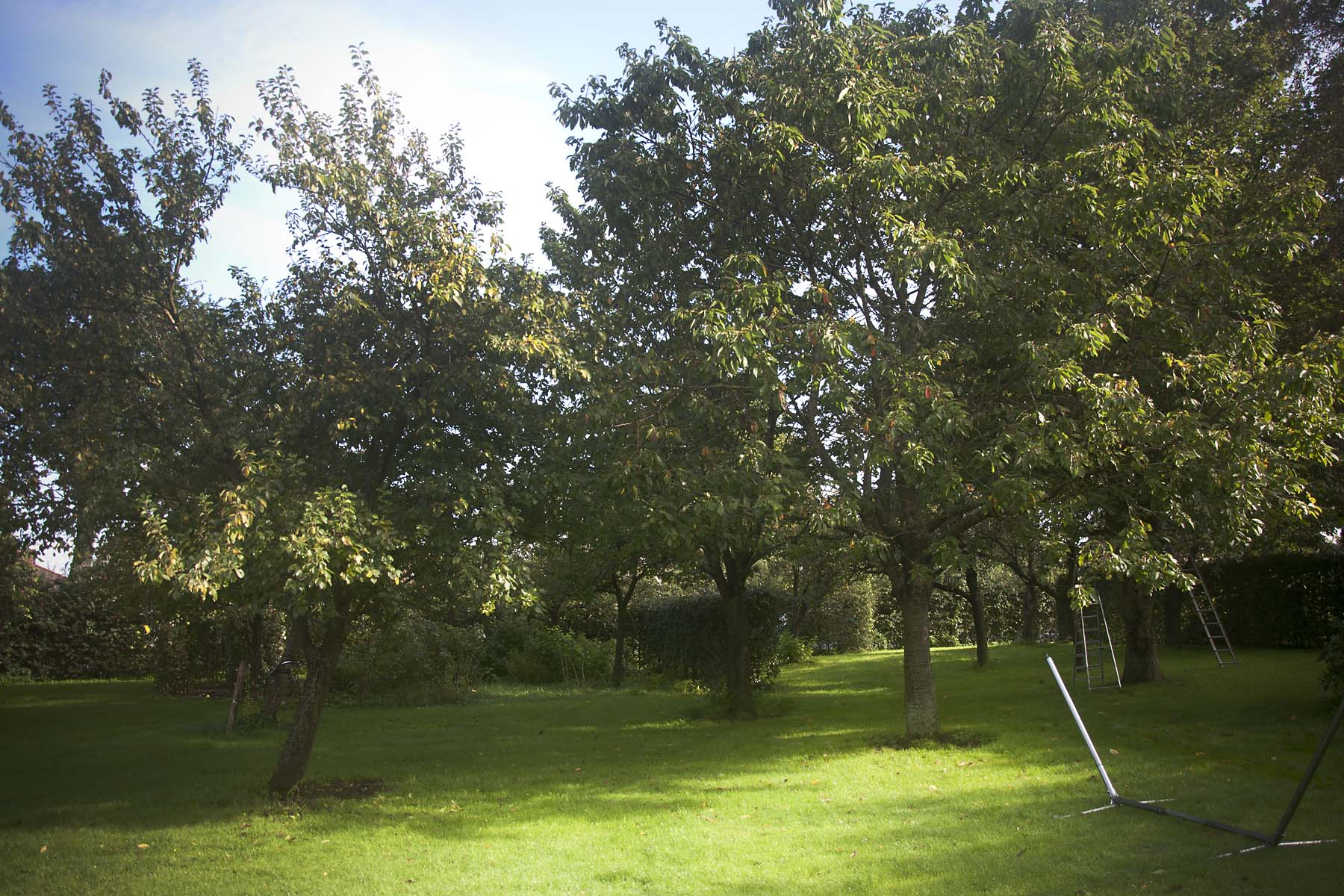 2015 09 19 HSB Steenwijk 5968
