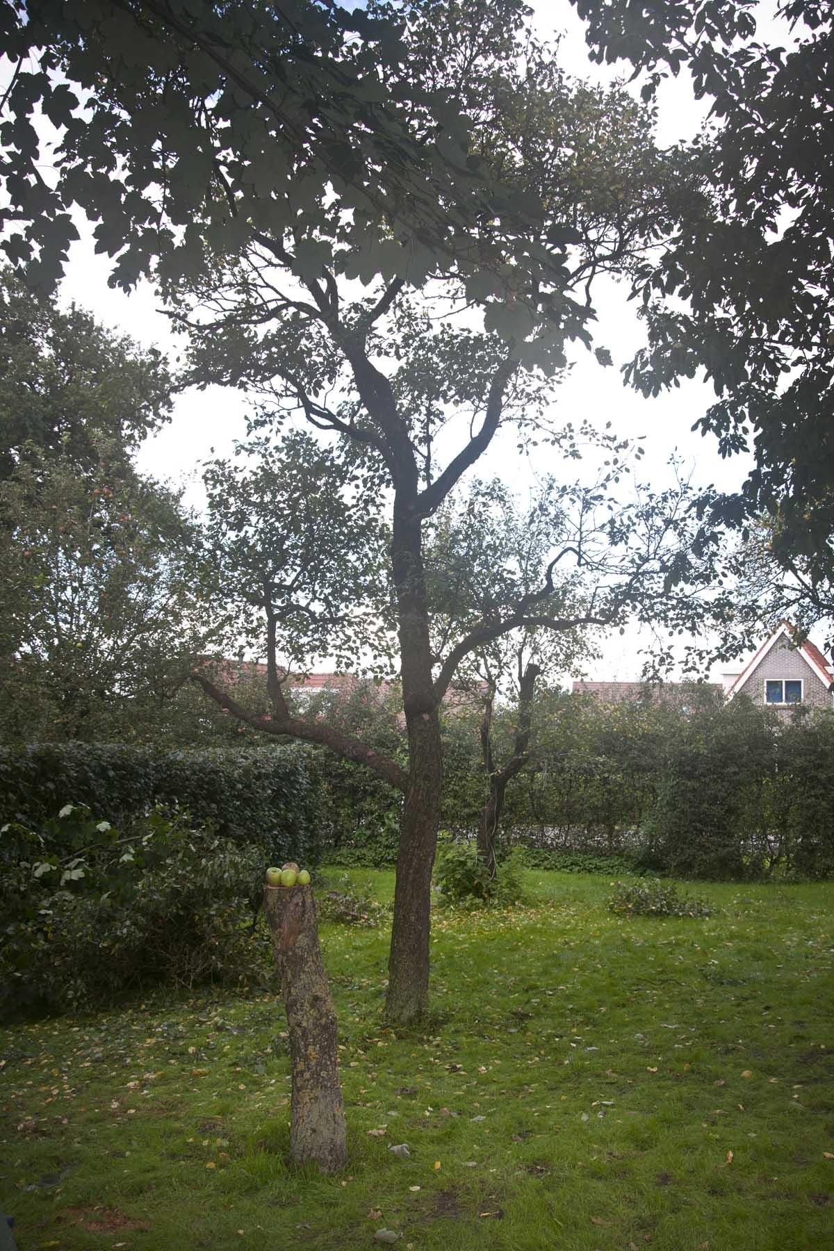 2015 09 19 HSB Steenwijk 5978