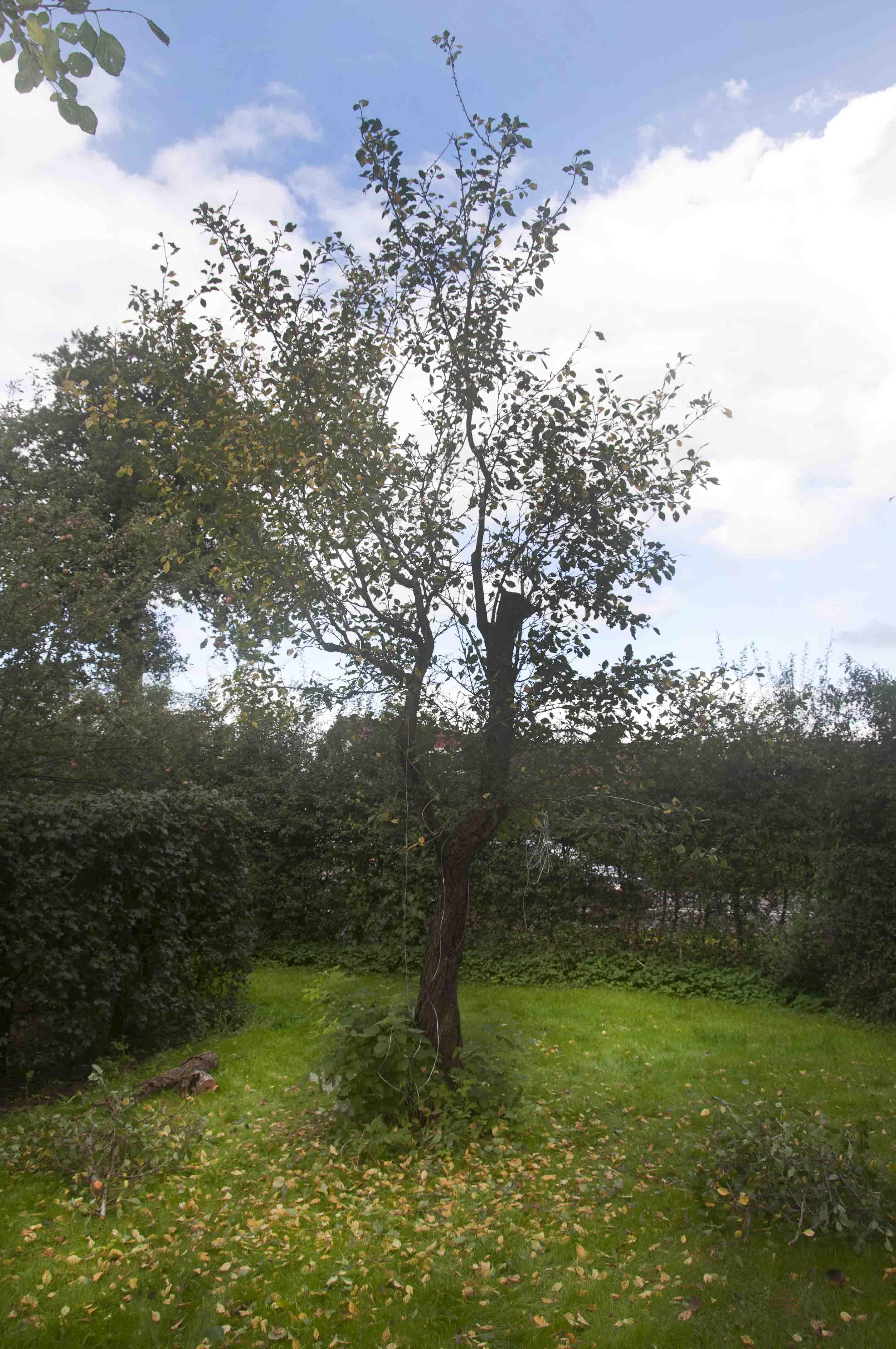 2015 09 19 HSB Steenwijk 5981