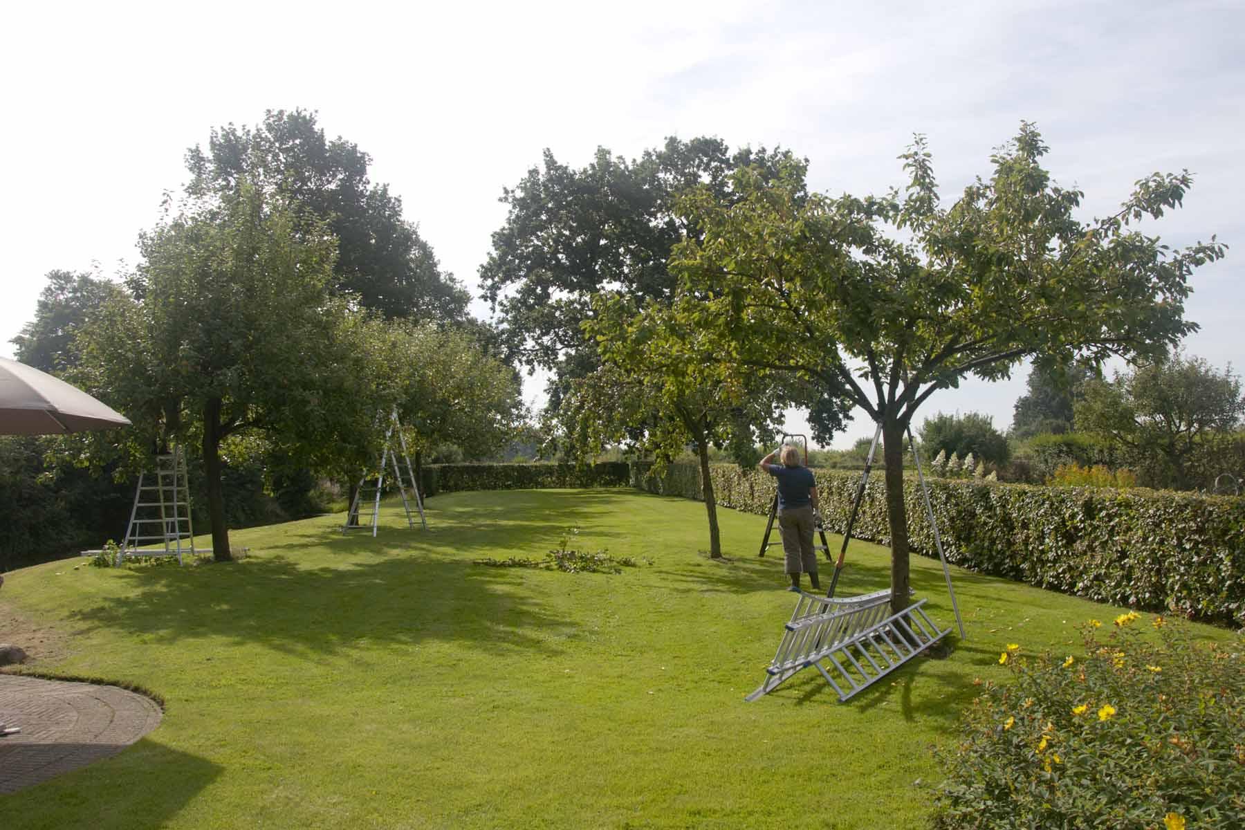 2012-08-18-hsb-steenwijkerwold-4109