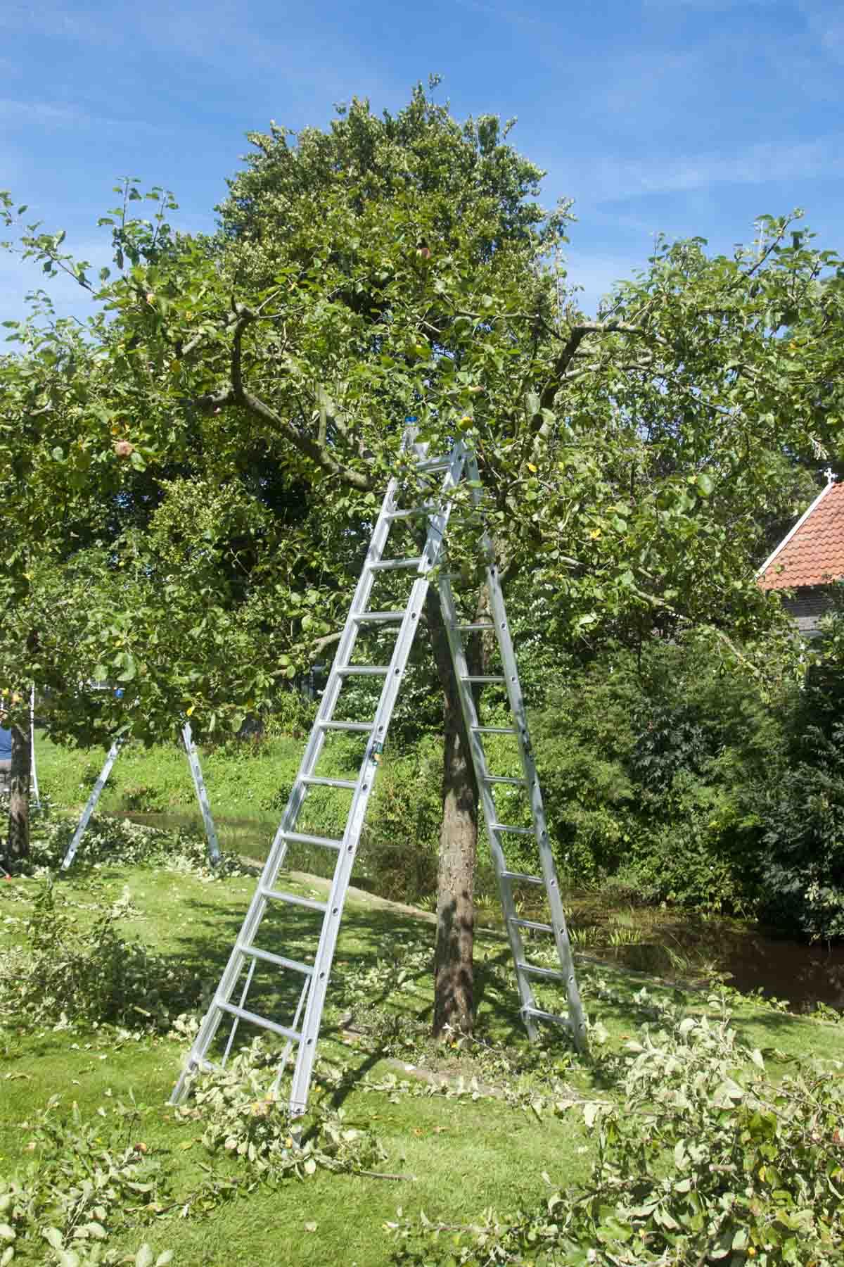 2012-08-18-hsb-steenwijkerwold-4119