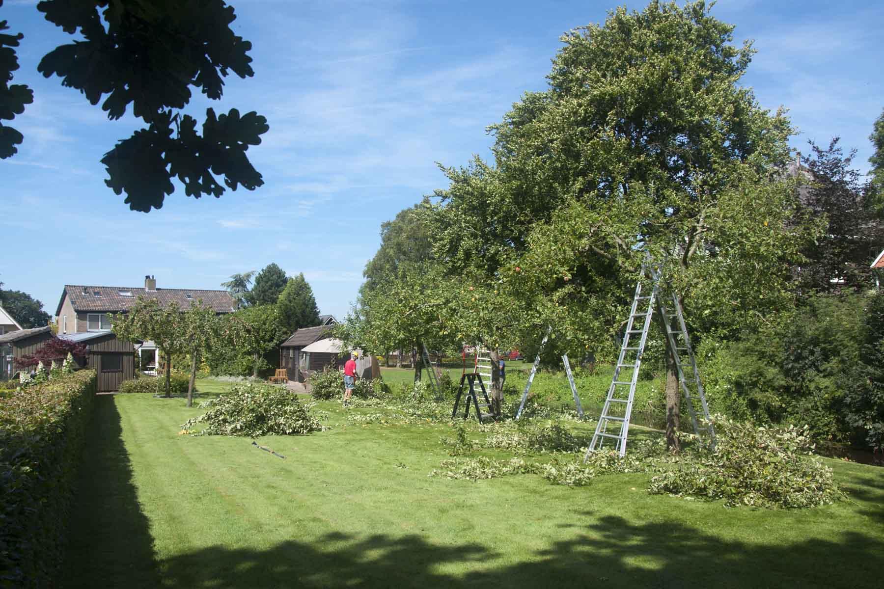 2012-08-18-hsb-steenwijkerwold-4120