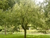 2013-08-17-hsb-vollenhove-4718