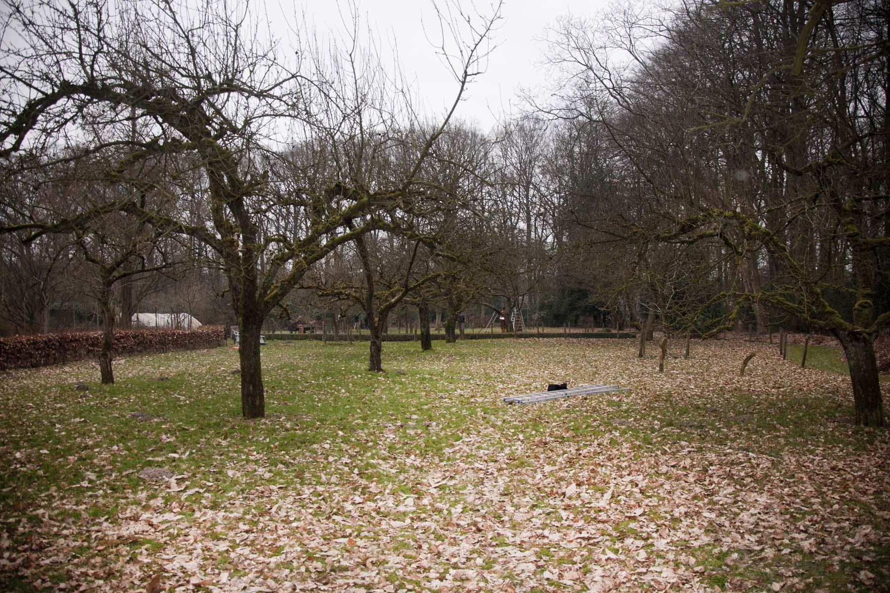 201-02-23-hsb-vollenhove-4514