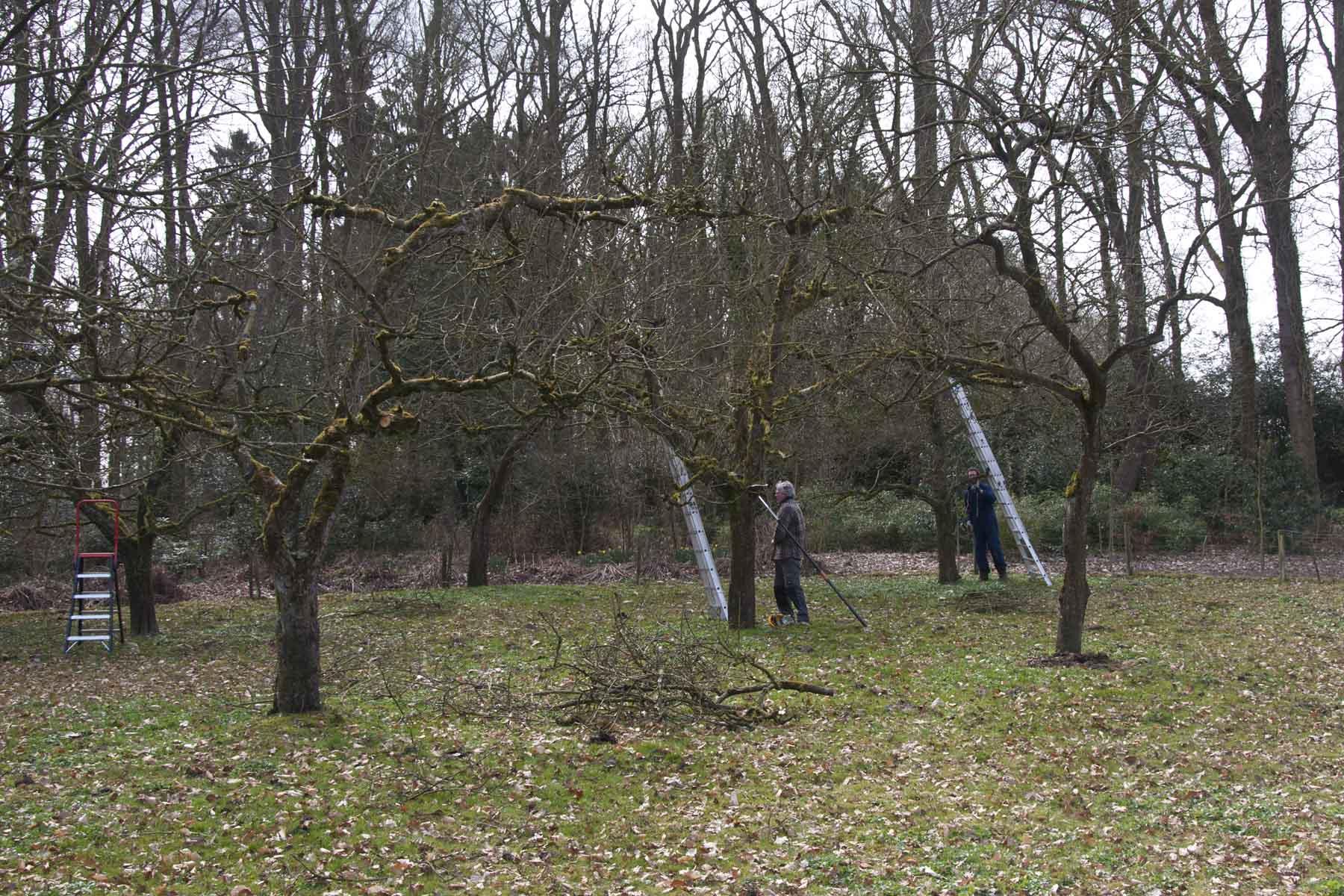 2011-03-26-hsb-vollenhove-2799