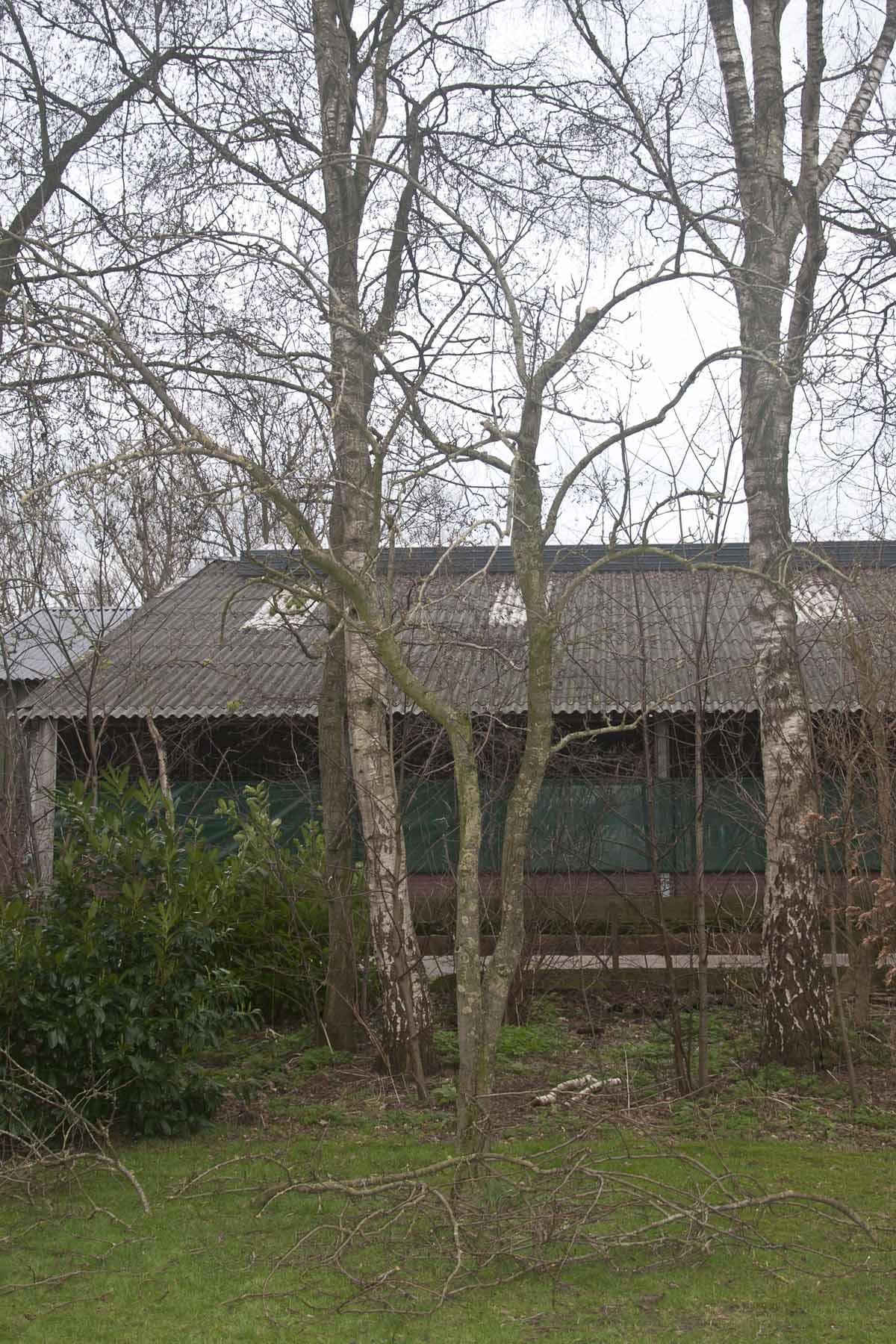 2016 02 06 HSB Wanneperveen 6054