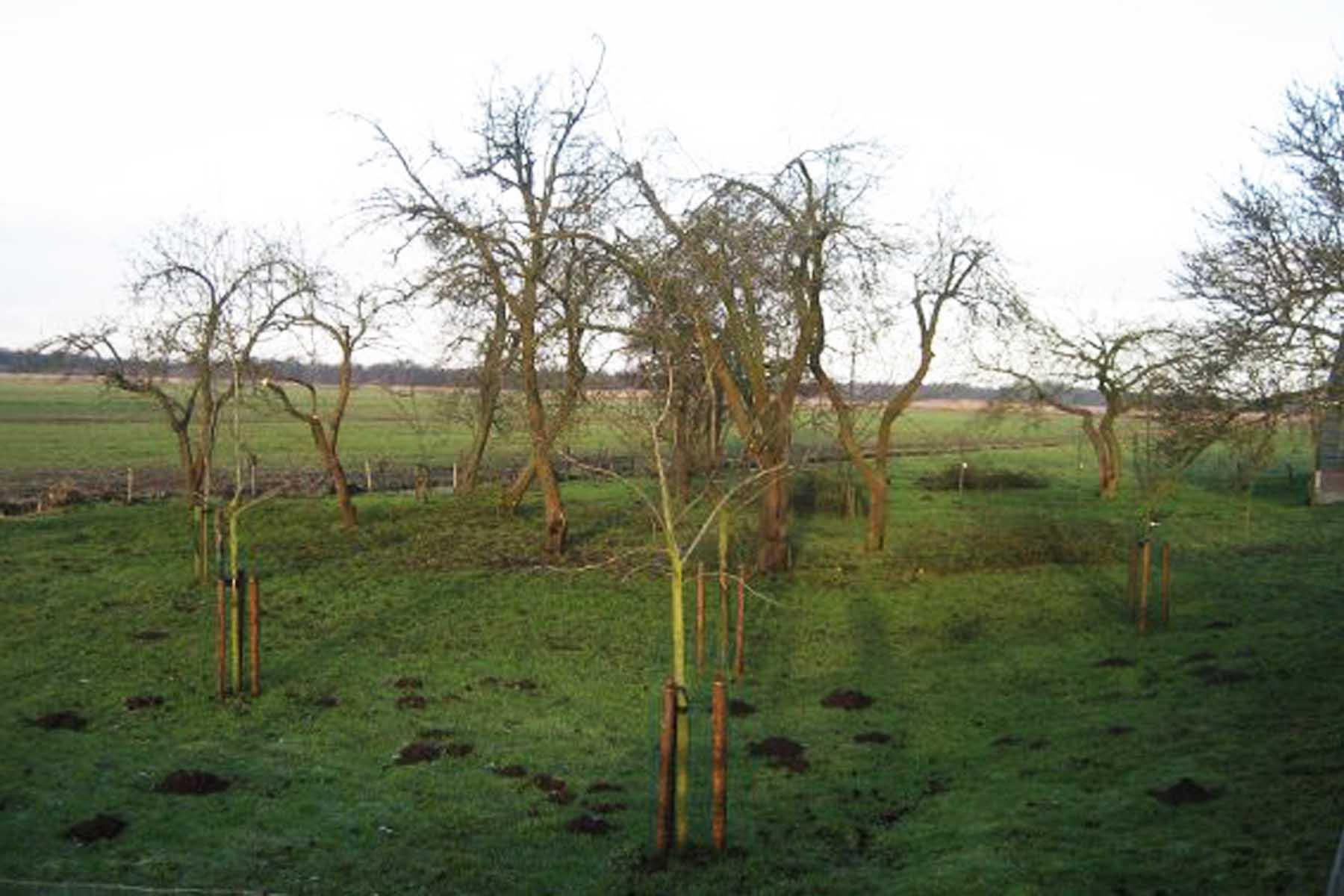 2011-01-08-hbs-te-wanneperveen-4