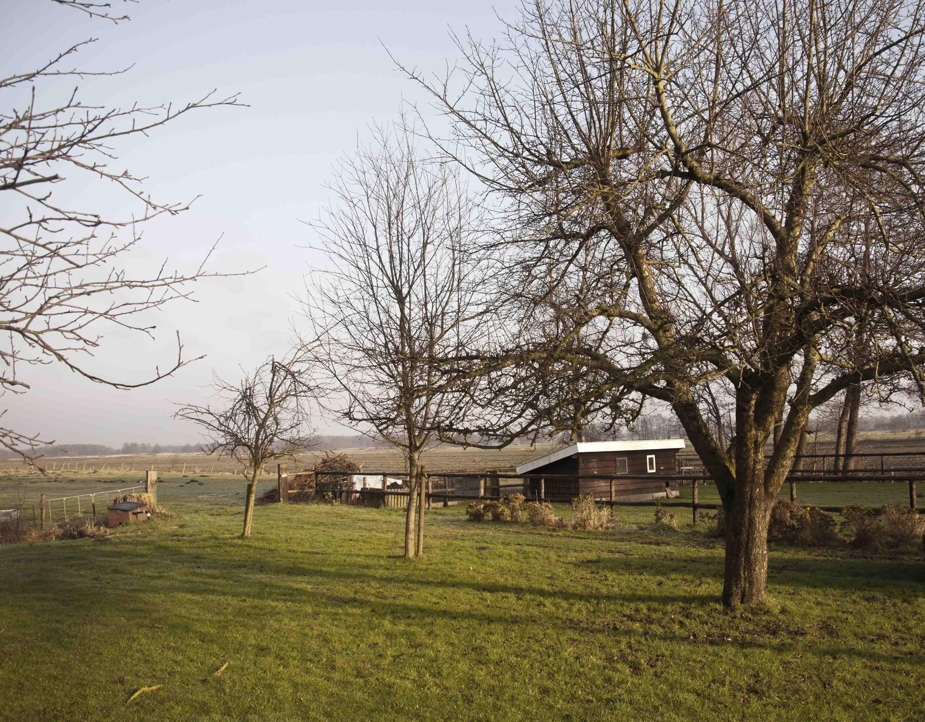 2012-01-28-hsb-wanneperveen-3510