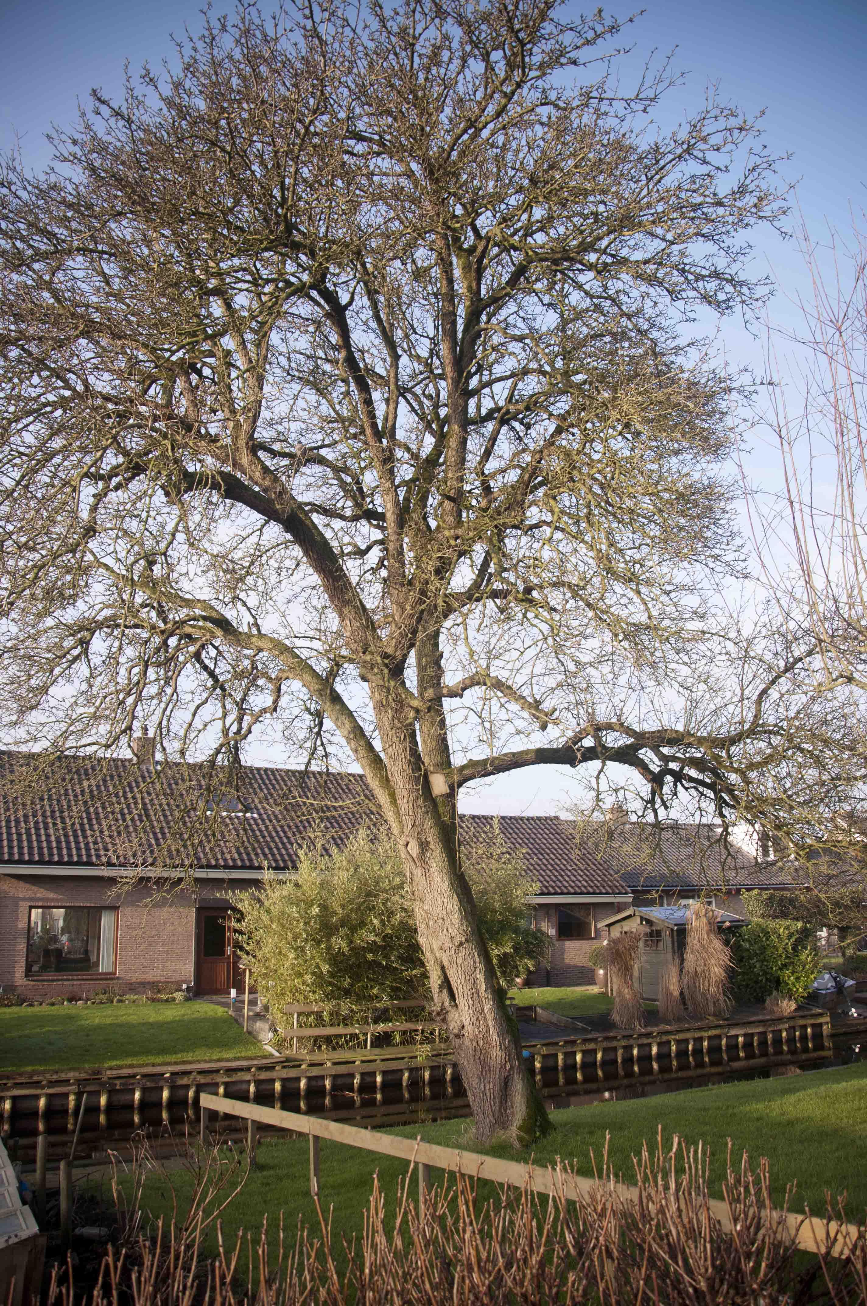 2012-01-28-hsb-wanneperveen-3515