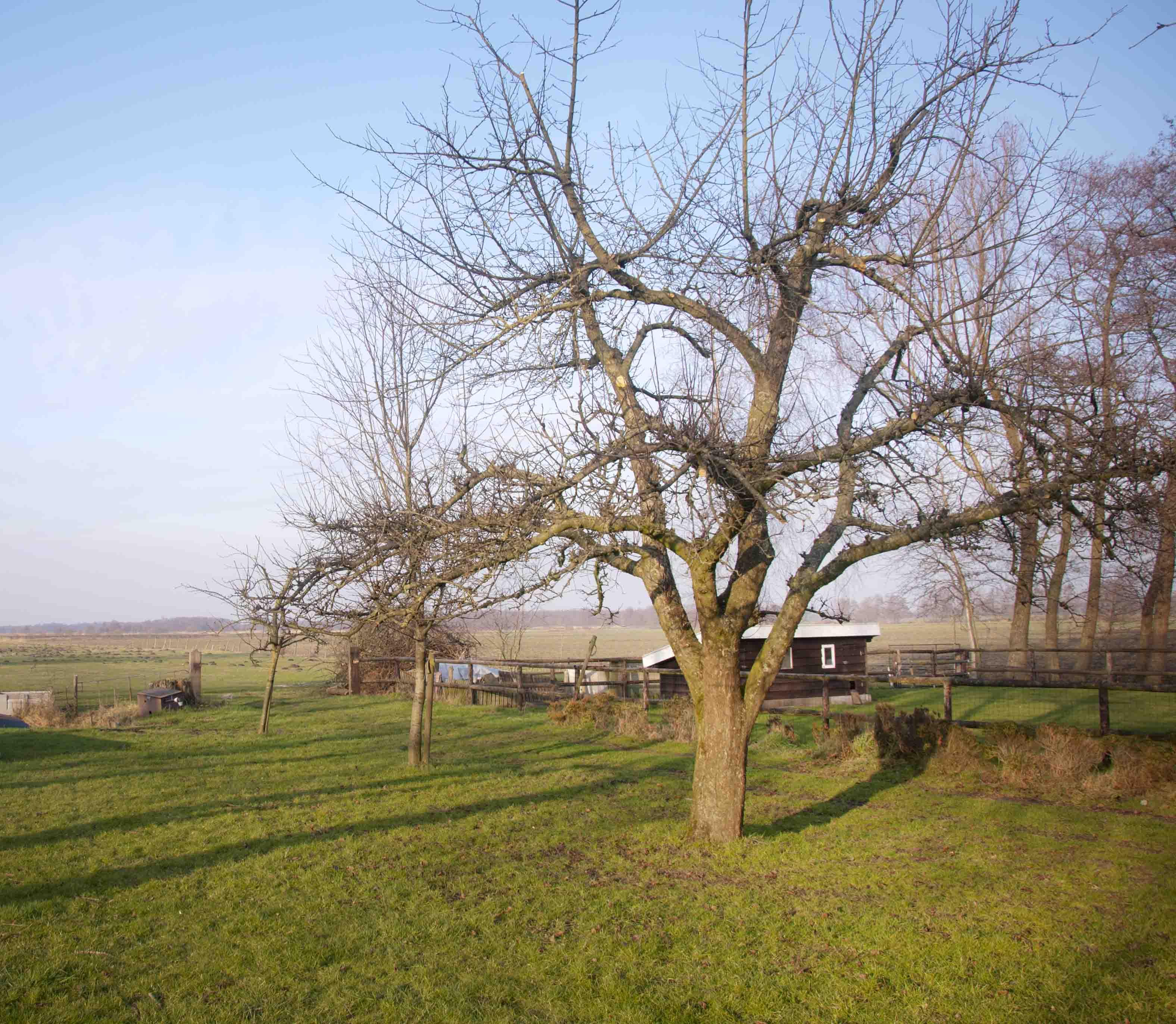 2012-01-28-hsb-wanneperveen-3517