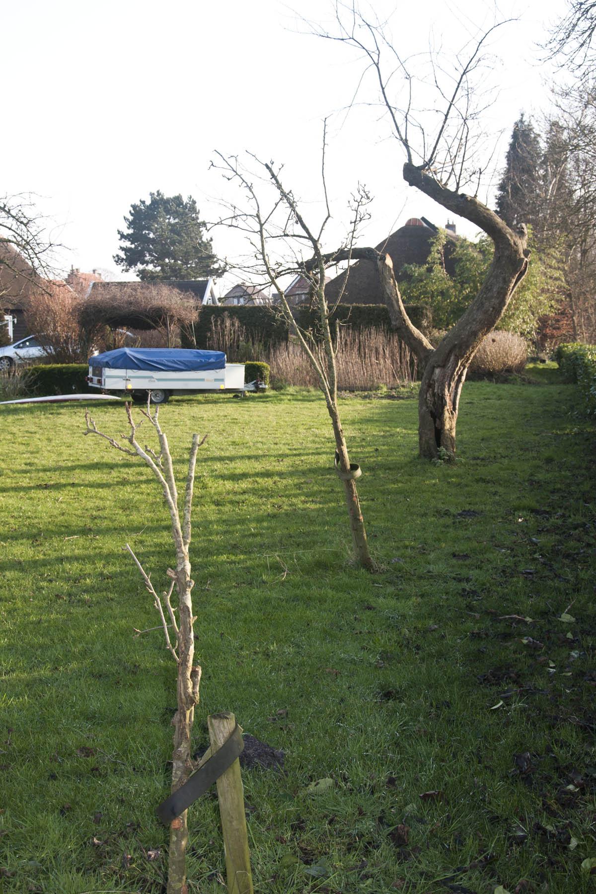 2012-01-28-hsb-wanneperveen-3521