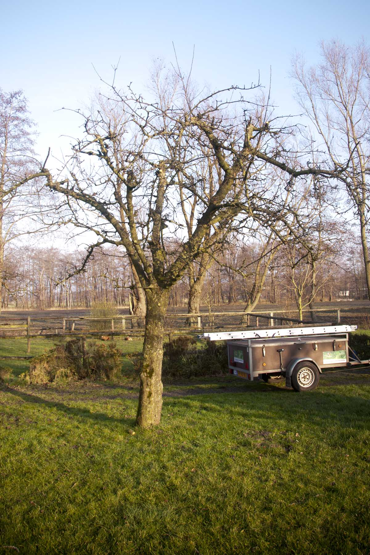2012-01-28-hsb-wanneperveen-3522