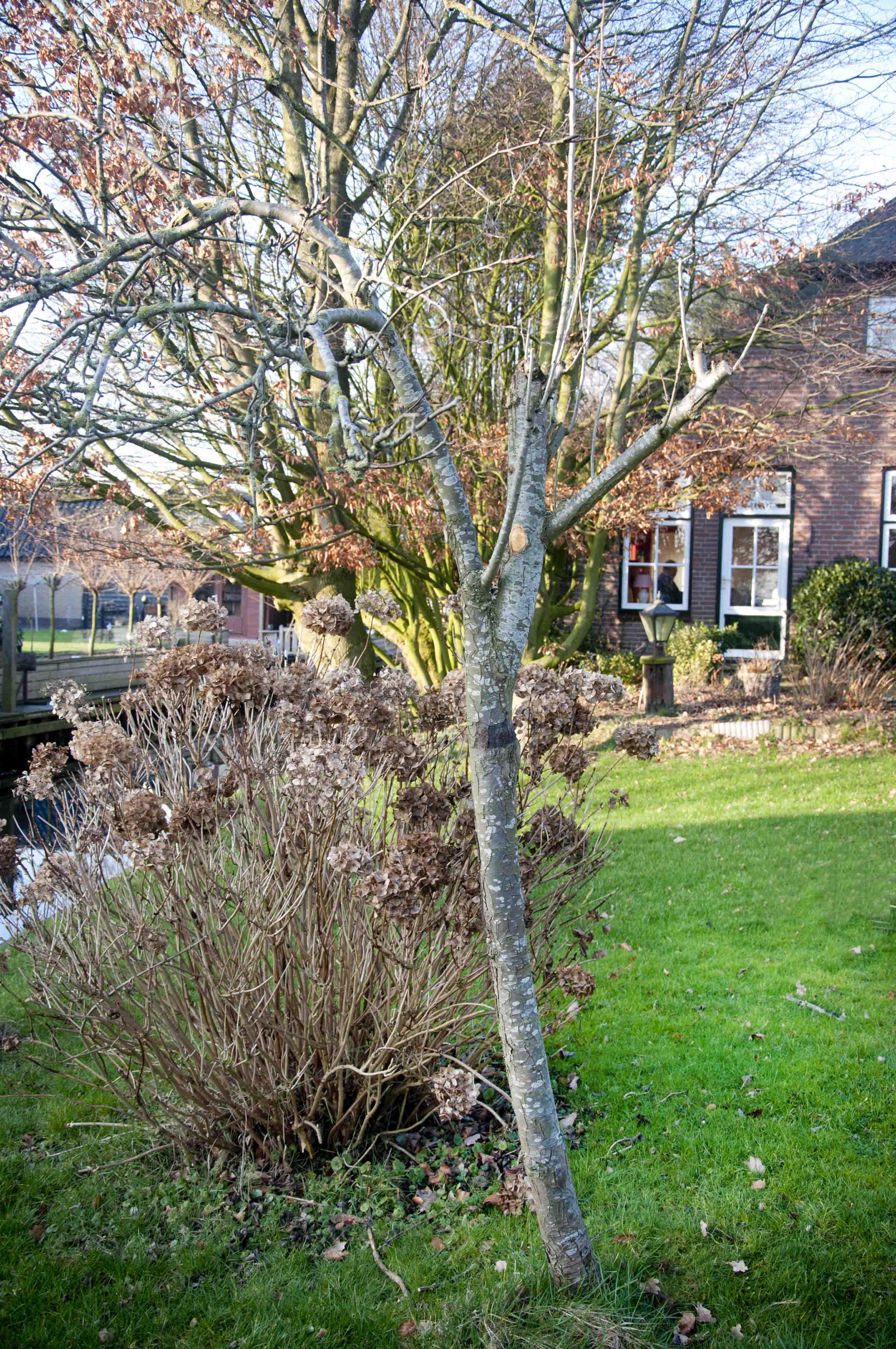 2012-01-28-hsb-wanneperveen-3523