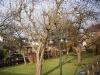 2012-01-28-hsb-wanneperveen-3516