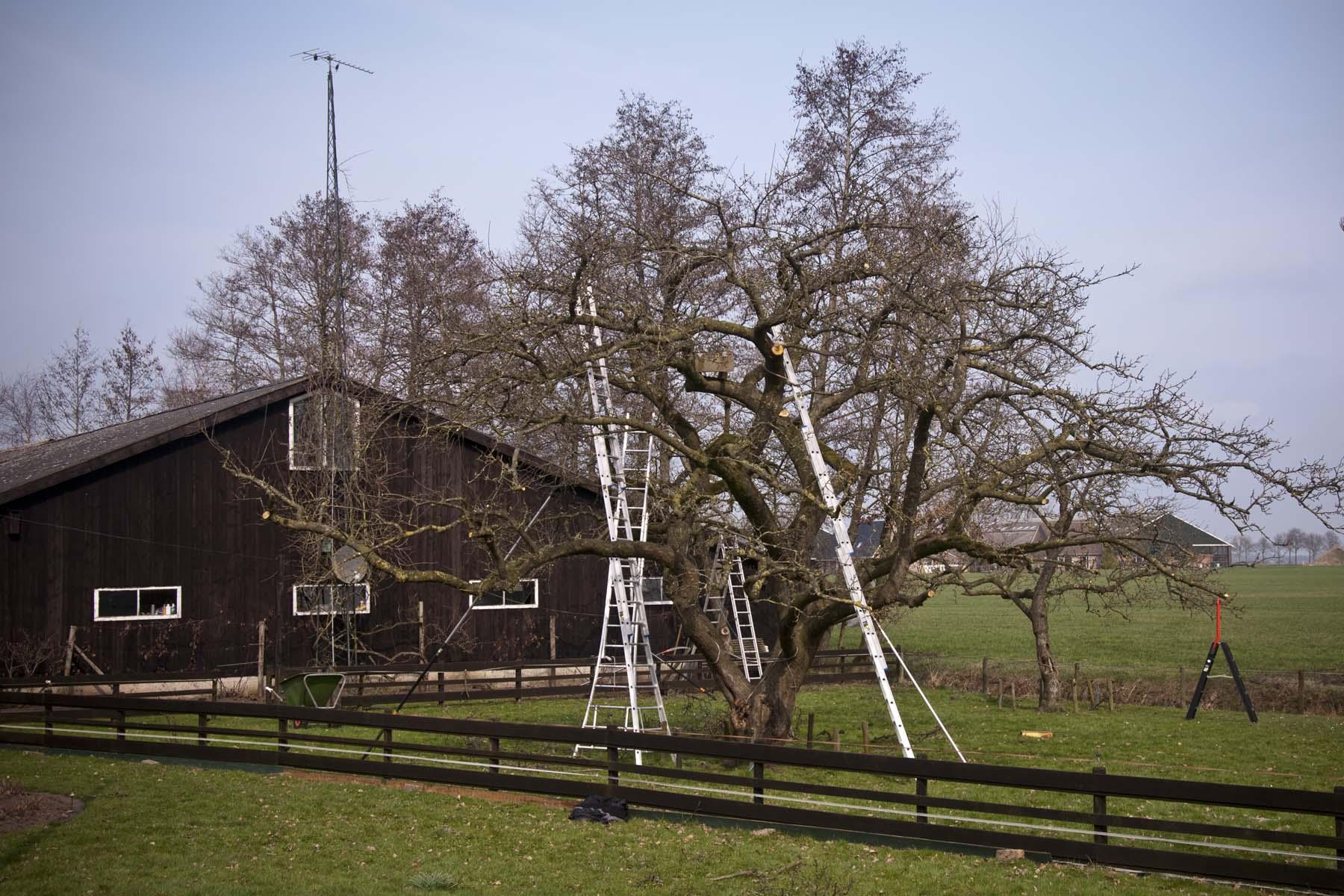 2012-03-17-hsb-wanneperveen-3609