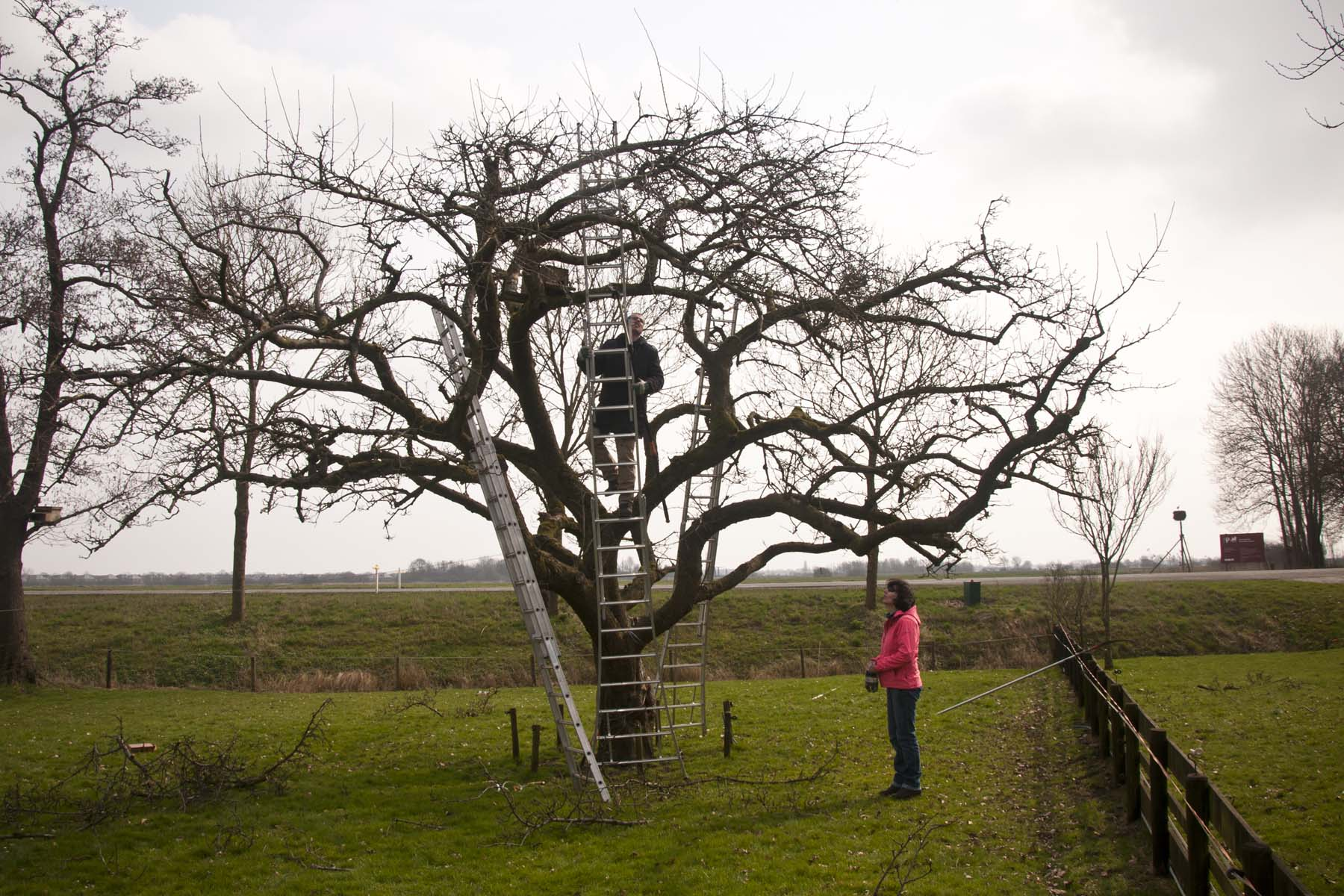 2012-03-17-hsb-wanneperveen-3616