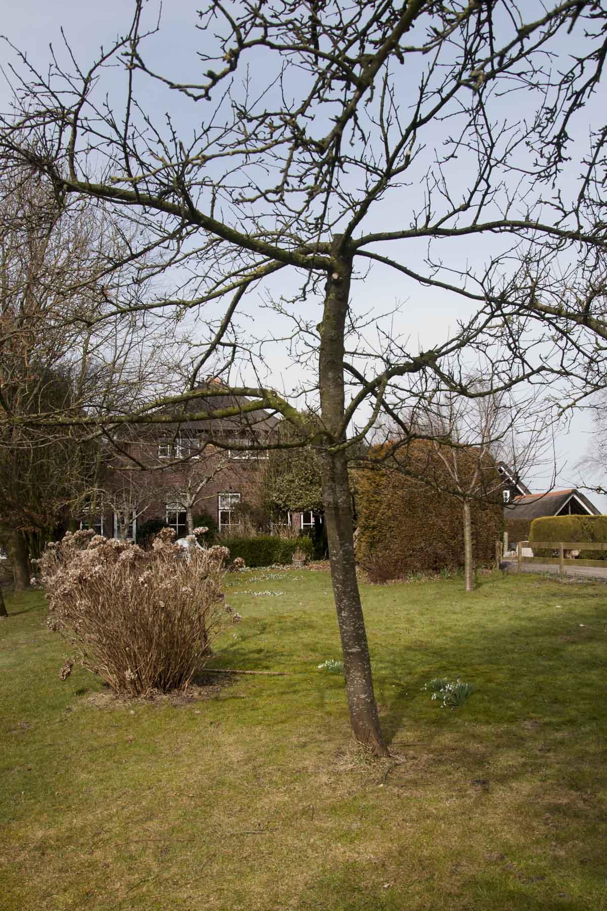 2013-03-23-hsb-wanneperveen-4540