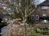2013-03-23-hsb-wanneperveen-4536