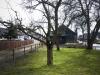 2013-03-23-hsb-wanneperveen-4541