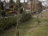2013-03-23-hsb-wanneperveen-4548