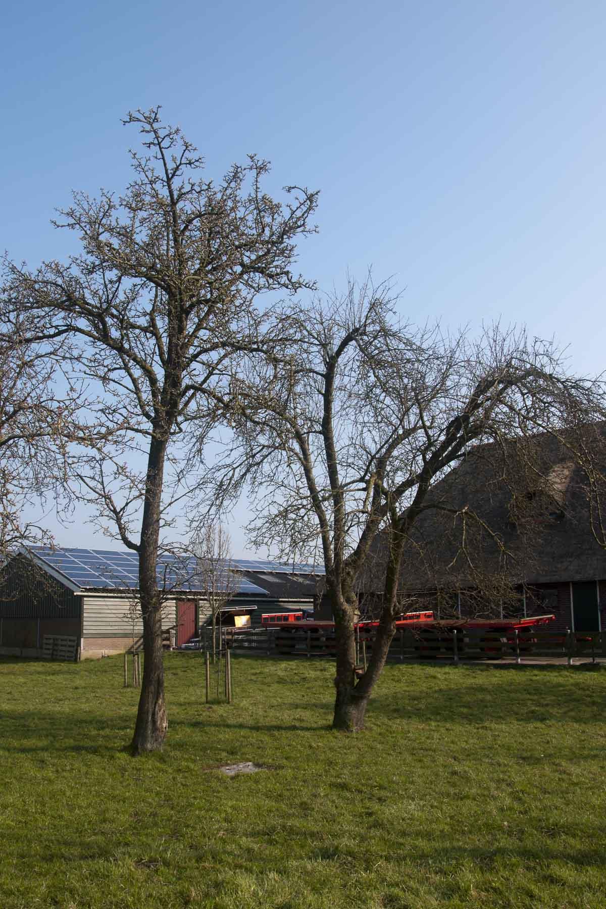 2014 03 29 HSB Wanneperveen 5174