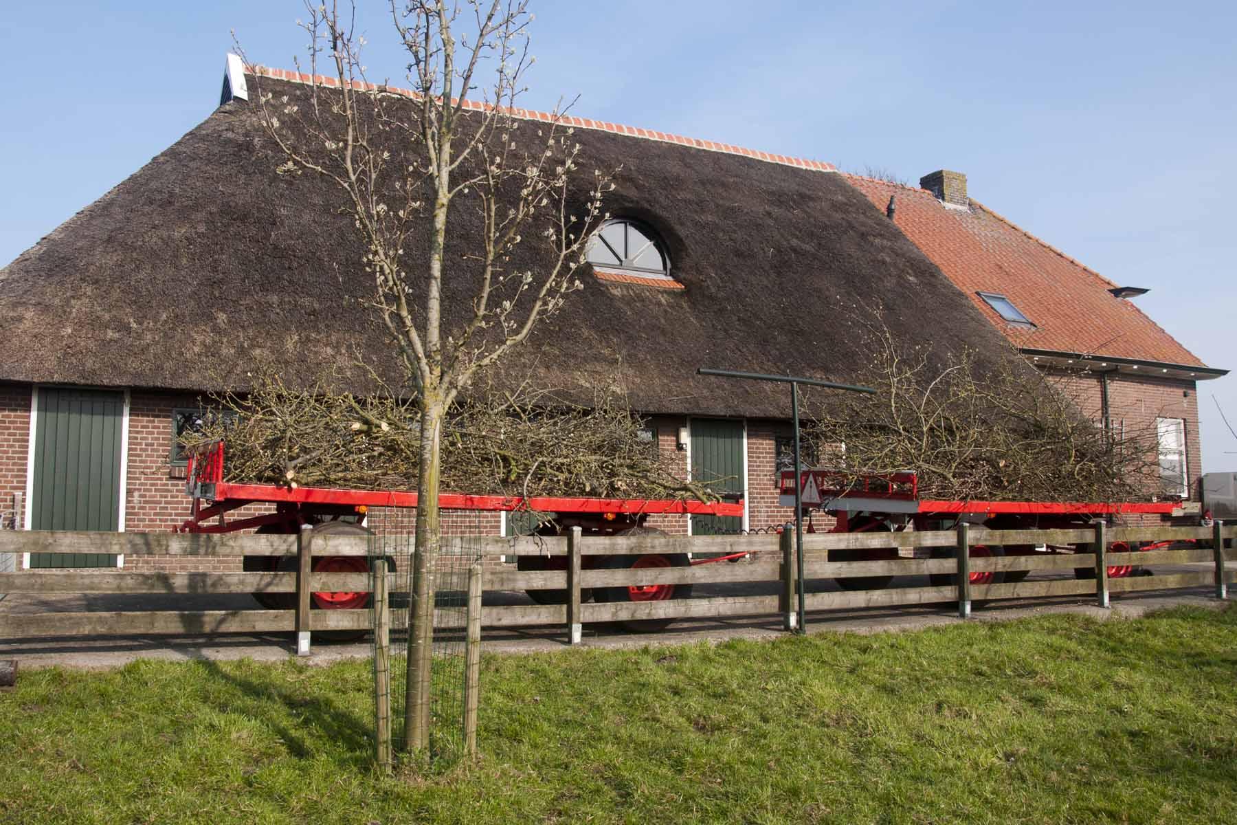 2014 03 29 HSB Wanneperveen 5184