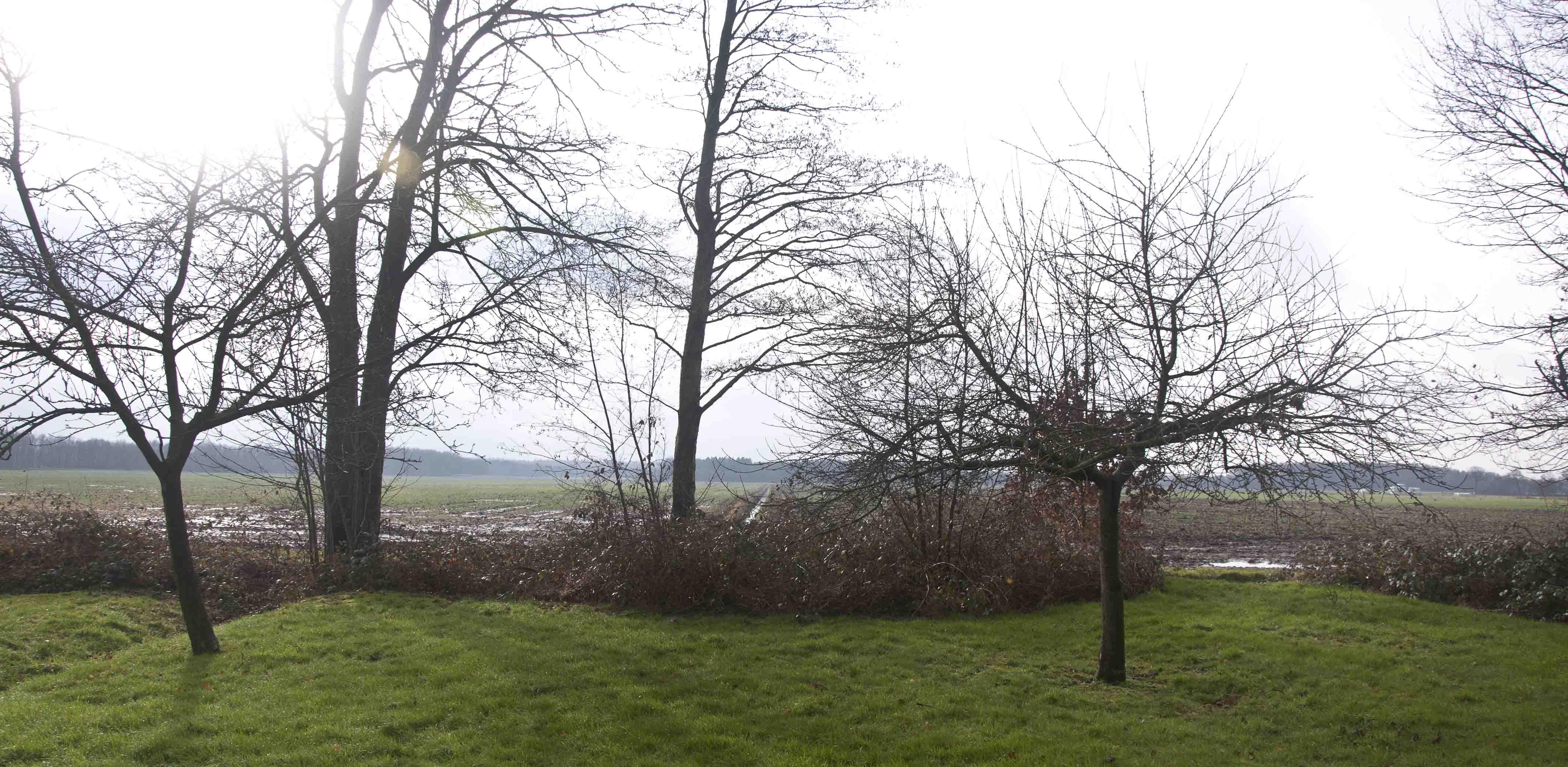 2015 02 21 HSB Wapserveen 5821