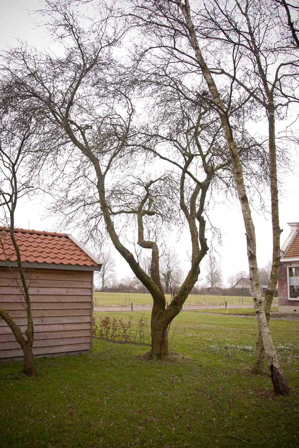 2011-02-19-hsb-zuidveen-2694