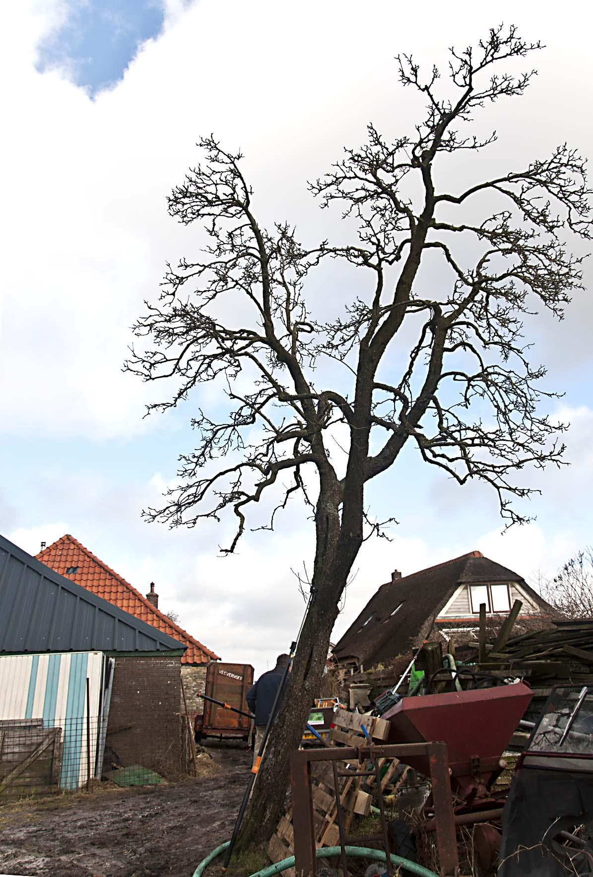 2012-02-25-hsb-zuidveen-3552
