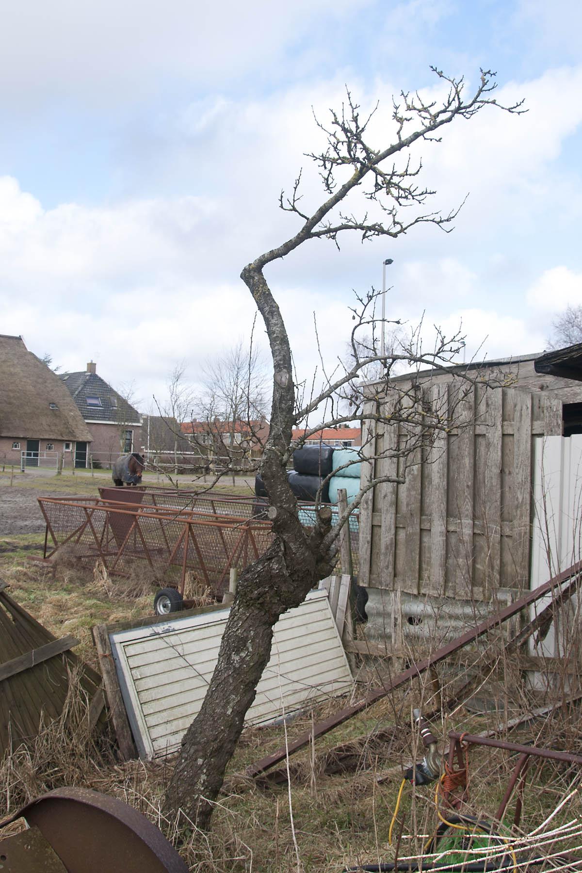 2012-02-25-hsb-zuidveen-3556
