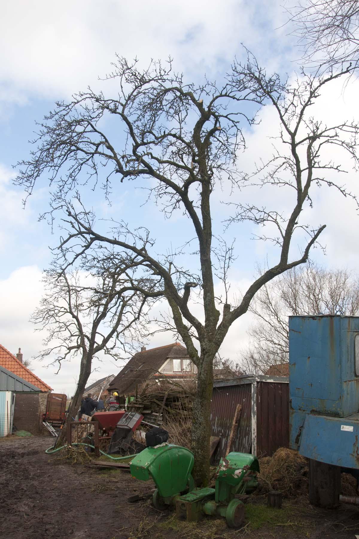 2012-02-25-hsb-zuidveen-3557