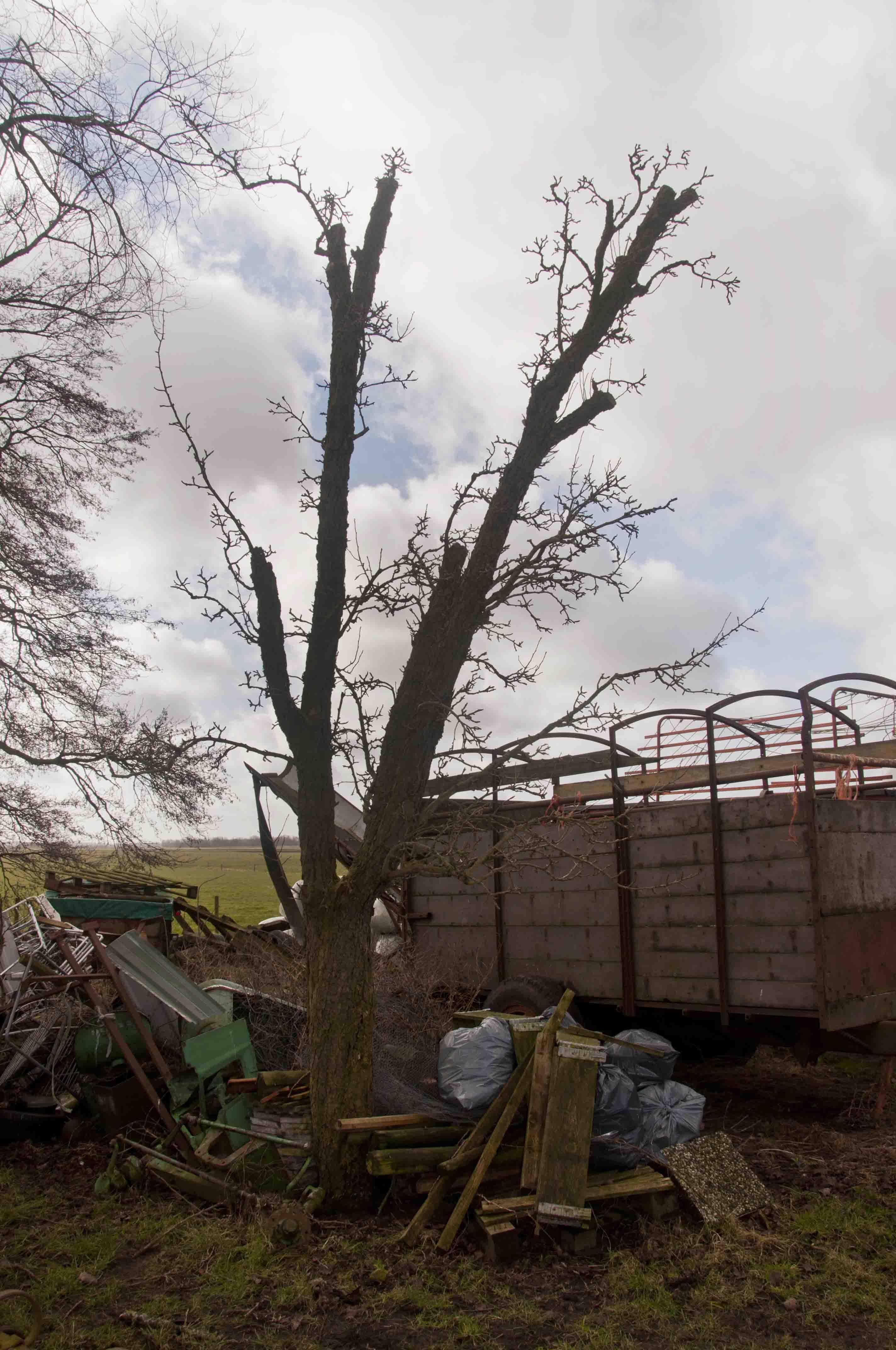 2012-02-25-hsb-zuidveen-3558